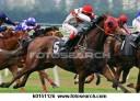 horse-racing_~k0151126