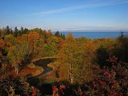 metsad eesti
