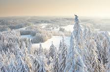 winter estonia