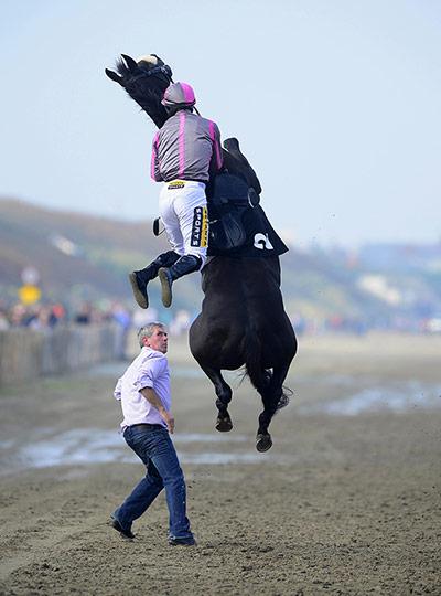 Horse Racing - 4 Sep 2014